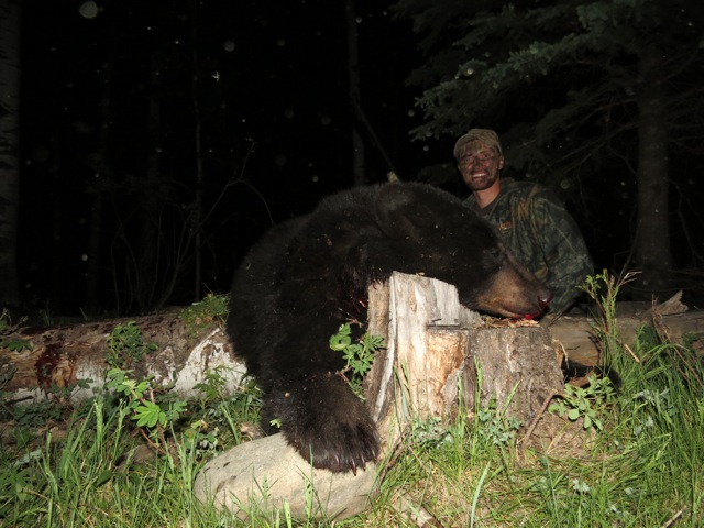 Another black bear down!!