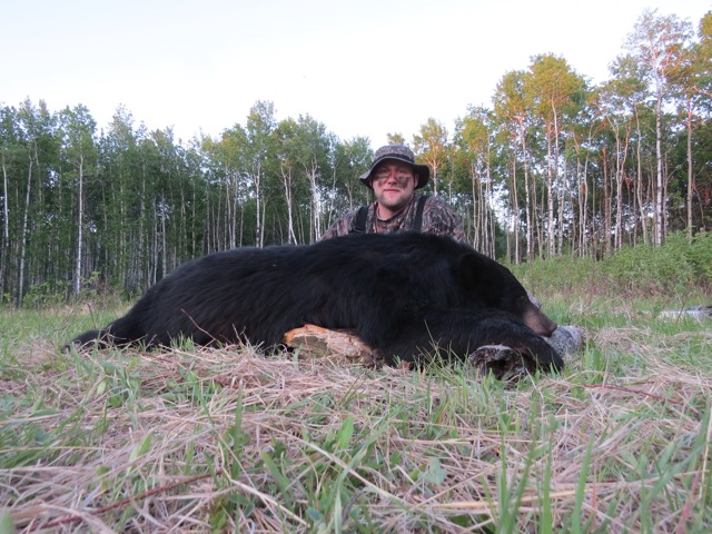 Nice Black Bear down