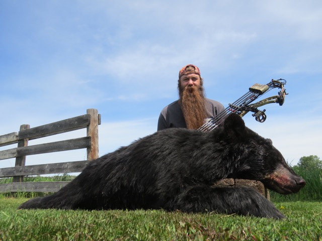 Great SK Black Bear